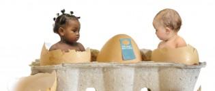 Fertilizare în vitro și sarcinile gemelare