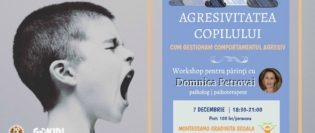 comportament-agresiv