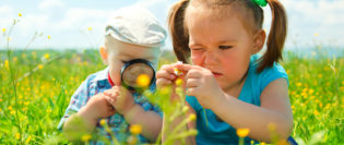 Children are playing on green meadow examining field flowers using magnifying glass