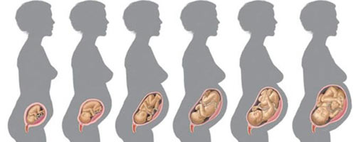 săptămâna 16 de sarcină